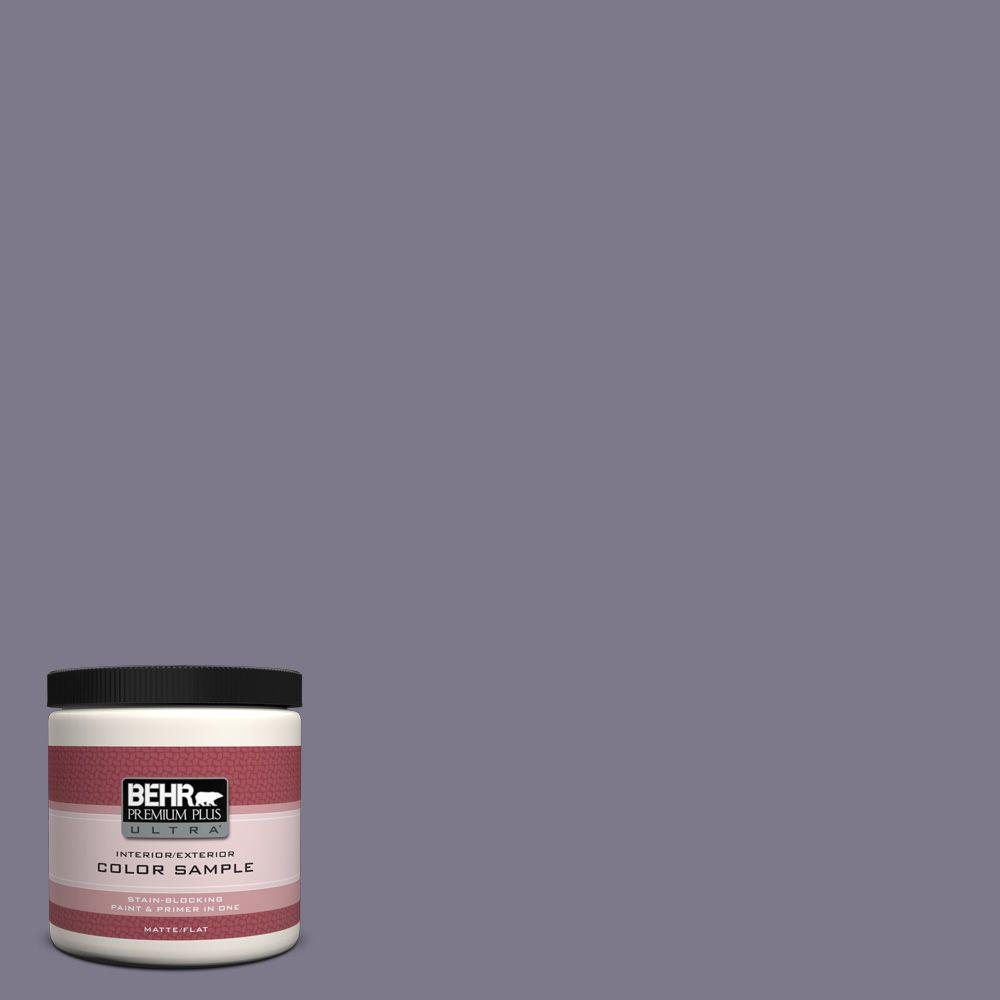 8 oz. #N560-5 Solitaire Matte Interior/Exterior Paint and Primer in One