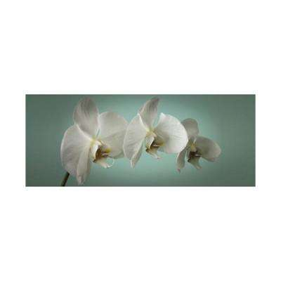 "39 in. x 16 in. ""Teal Orchid"" by Graham and Brown Printed Canvas Wall Art"
