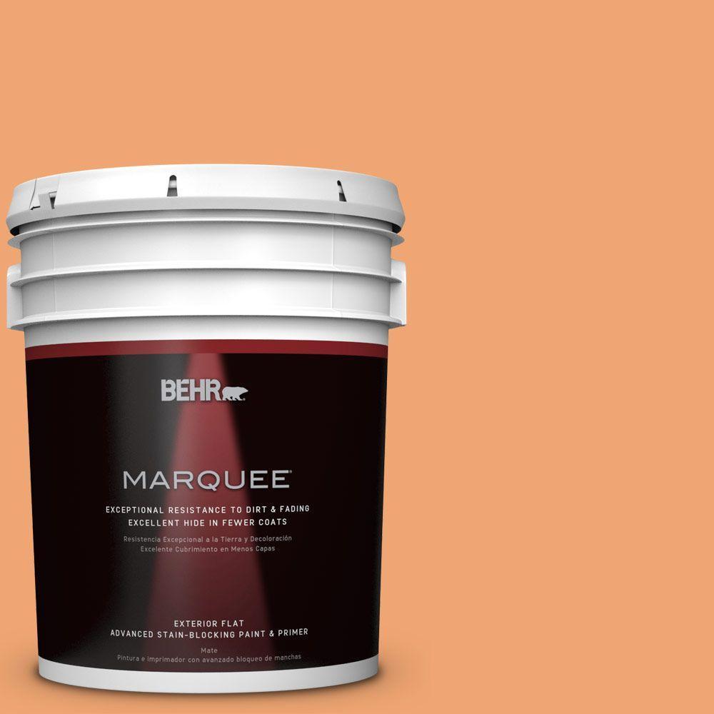 5 gal. #HDC-SP16-04 Apricot Jam Flat Exterior Paint