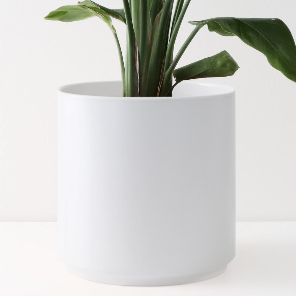 8 in. White Ceramic Indoor Planter (7 in. to 12 in.)