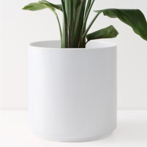 12 in. White Ceramic Indoor Planter (7 in. to 12 in.)