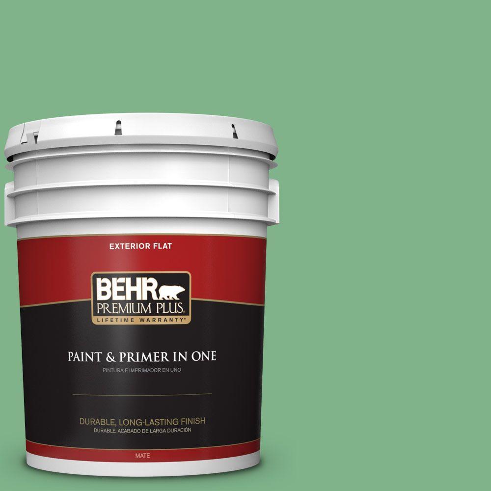 BEHR Premium Plus 5-gal. #460D-5 Tree Fern Flat Exterior Paint
