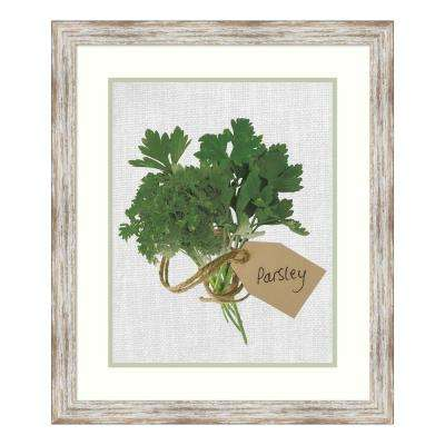 """Parsley"" by Assaf Frank Framed Wall Art"
