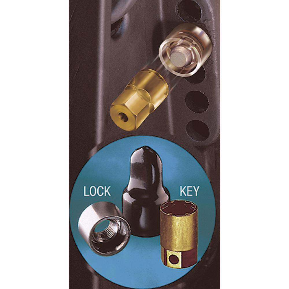 McGard Marine Single Outboard Motor Lock Set 5/16-18 Thread Size F/Small