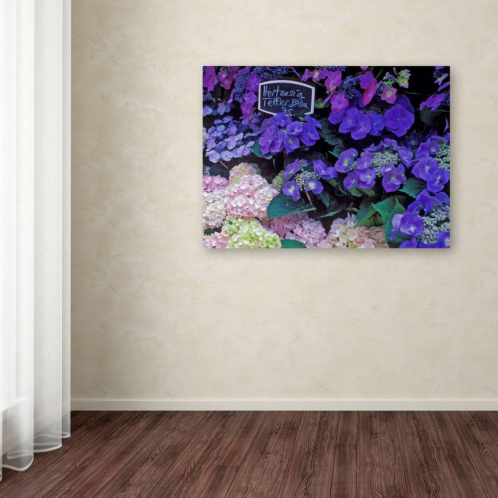 Trademark Fine Art 14 in. x 19 in. Paris Flower Market Hydrangeas Canvas Art