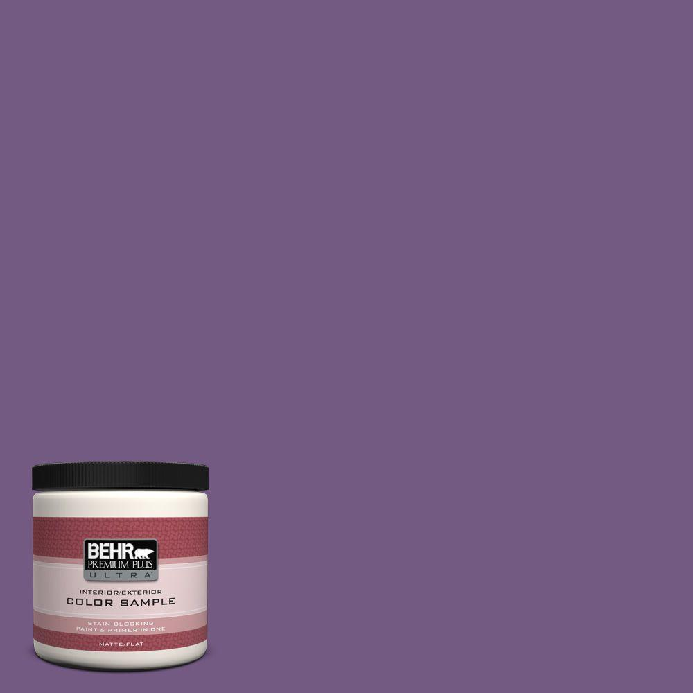 650b 7 Mystical Purple Matte Interior Exterior Paint And Primer In One Sample