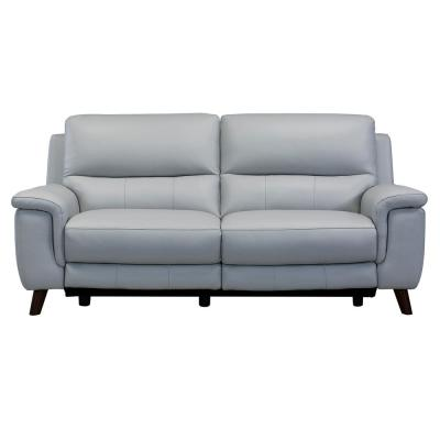 Lizette Dark Brown Wood and Dove Grey Genuine Leather Contemporary Sofa