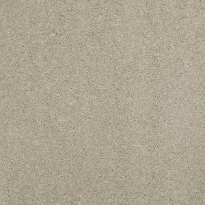 Attrayant Platinum Plus Carpet Sample   Coral Reef I   Color Garden Gate Texture 8  In. X 8 In. SH 283300   The Home Depot