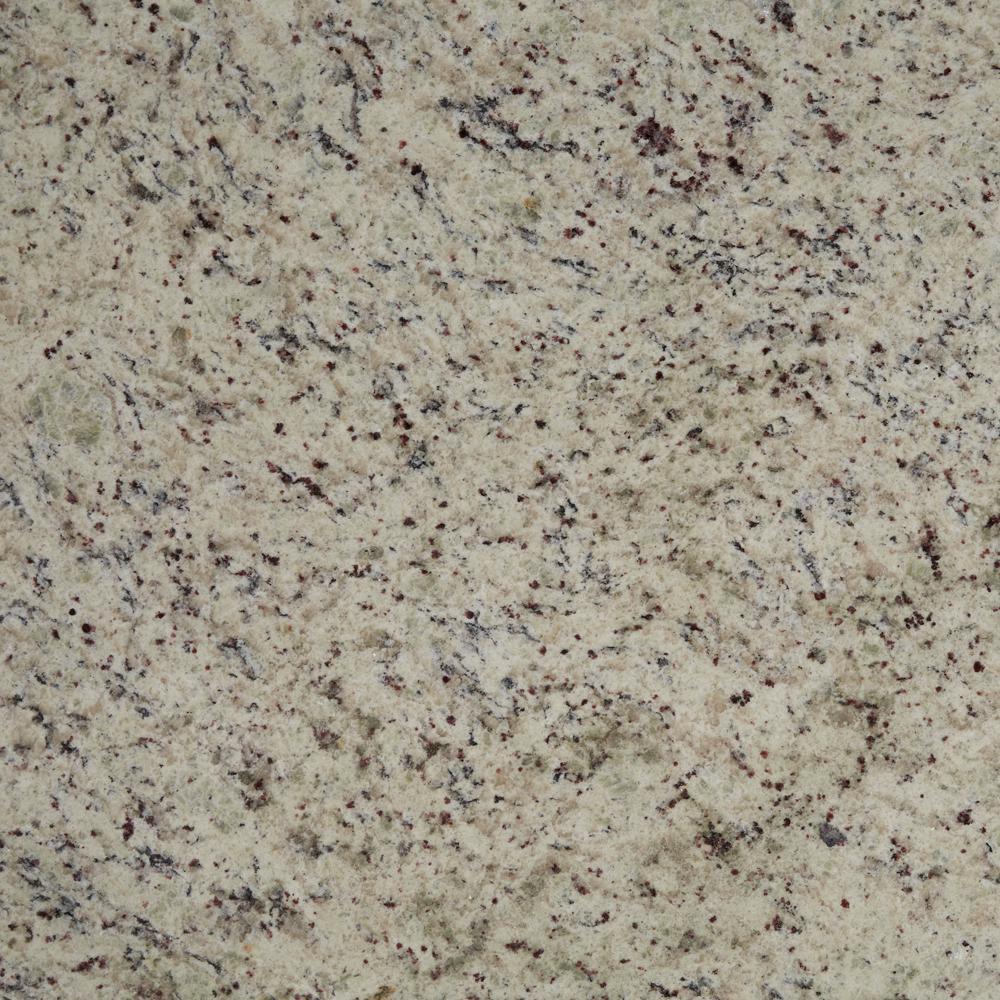 STONEMARK 3 in. x 3 in. Granite Countertop Sample in Dallas White