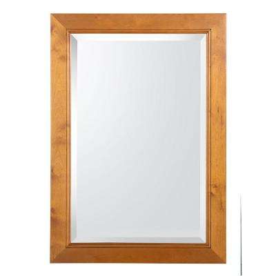Exhibit 34 in. L x 24 in. W Wall Mirror in Rich Cinnamon