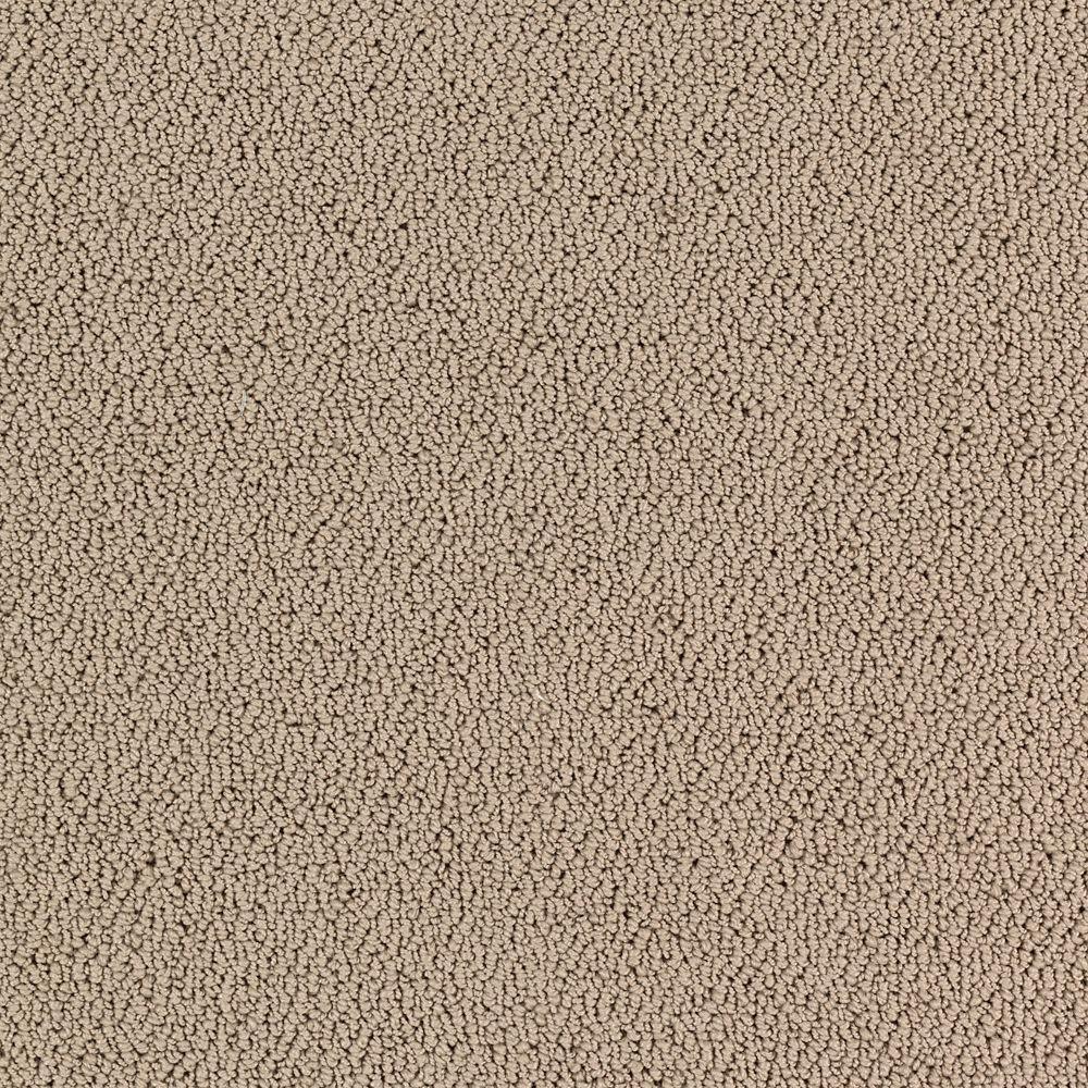 Lower Treasure - Color Sea Pearl Pattern 12 ft. Carpet