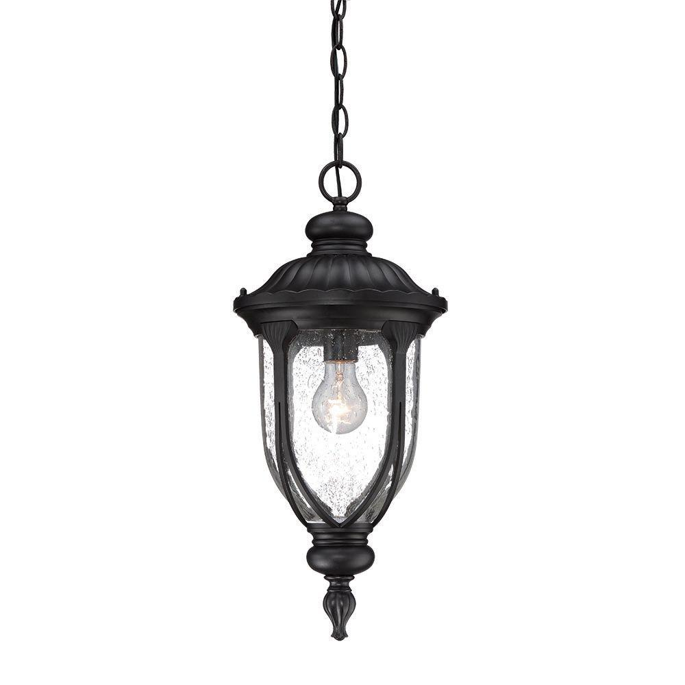 Laurens 1-Light Matte Black Outdoor Hanging Lantern