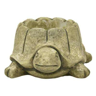 3.5 in. Green Turtle Flower Pot