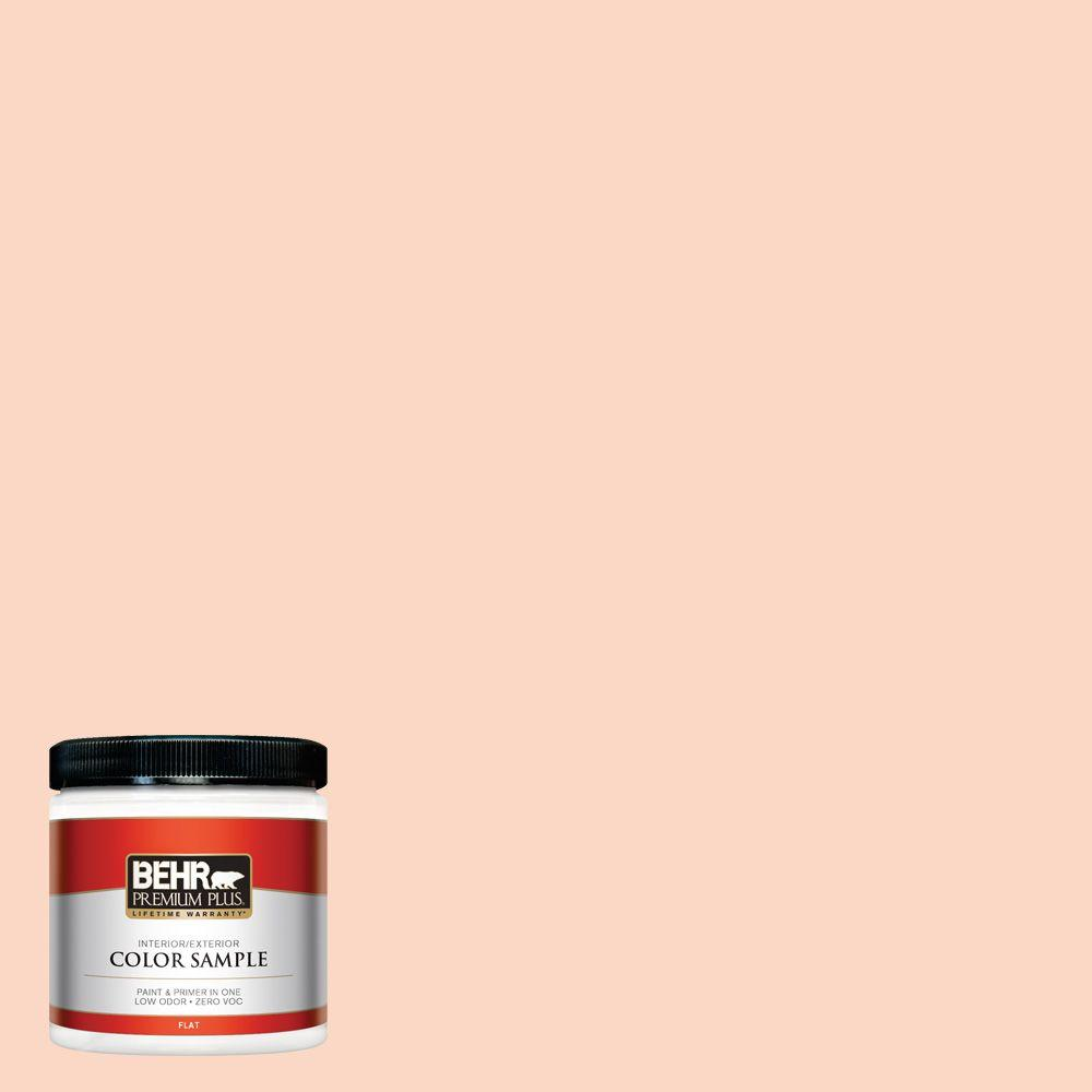 8 oz. #P190-1 Fire Mist Interior/Exterior Paint Sample