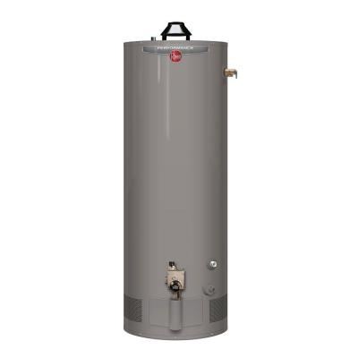 Performance Manufactured Housing 40 Gal. Tall 6 Year 34,000 BTU Convertible Natural Gas/LP Tank Water Heater