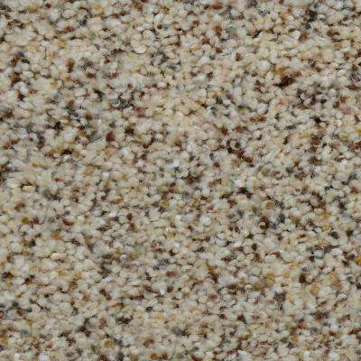 Carpet Sample - Beach Club I - Color Winfield Texture 8 in. x 8 in.