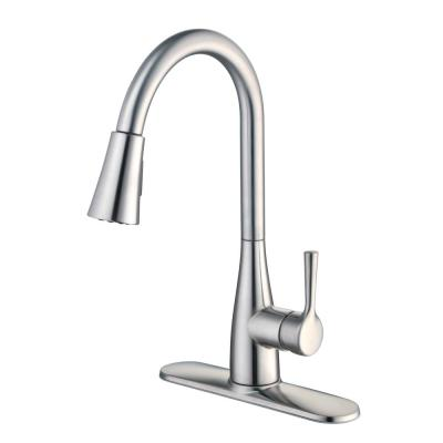 Sadira Single-Handle Pull-Down Sprayer Kitchen Faucet with TurboSpray and FastMount in Stainless Steel