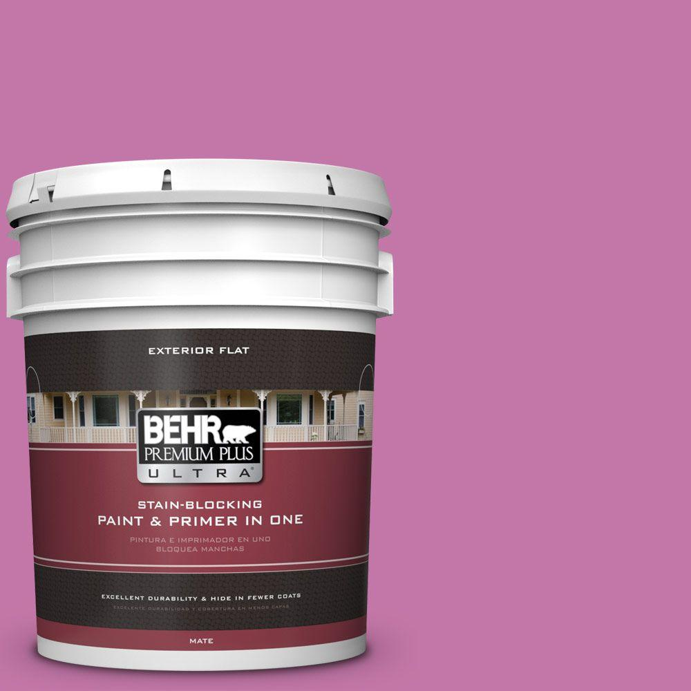 BEHR Premium Plus Ultra 5-gal. #680B-5 Strawberry Freeze Flat Exterior Paint
