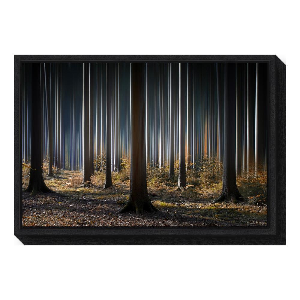 Amanti Art ''Mystic Wood'' by Carsten Meyerdierks Framed Canvas Wall Art