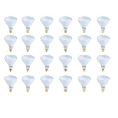 500-Watt Soft White (2700K) R40 Dimmable Incandescent 130-Volt Pool and Spa Flood Light Bulb (24-Pack)
