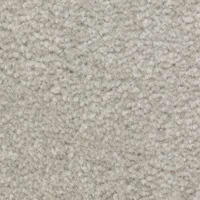 Best Wishes II - Color Dolphin Texture 12 ft. Carpet