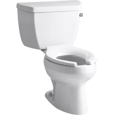 Wellworth 2-Piece 1 GPF Single Flush High-Efficiency Elongated Toilet in White