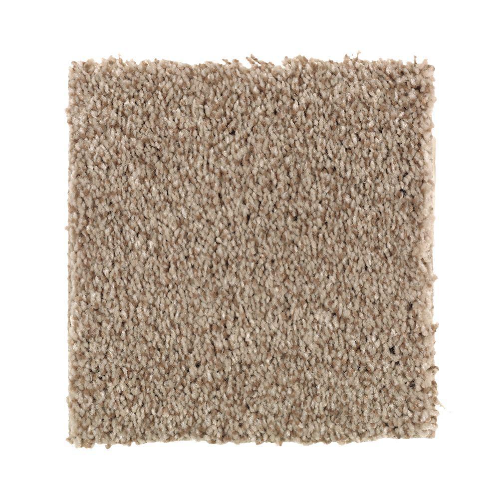 Carpet Sample - Gemini II Color - Tudor Brown Texture 8 in. x 8 in.
