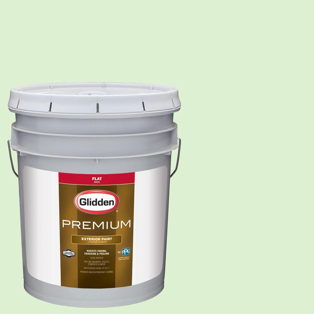 Glidden Premium 5-gal. #HDGG42 Early Frost Flat Latex Exterior Paint