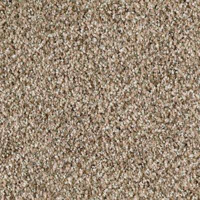 Carpet Sample - Briarmoor I - Color Mystic Wood Texture 8 in. x 8 in.