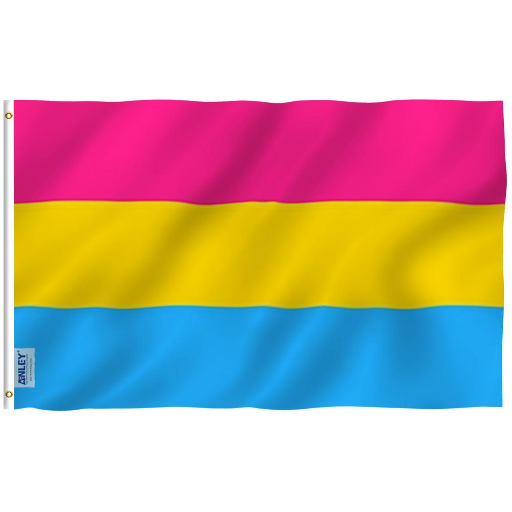 Anley Fly Breeze 3 Ft X 5 Ft Polyester Pansexual Pride