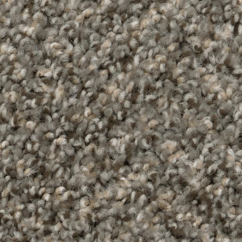Trafficmaster Promenade Color Drive Texture 12 Ft Carpet H4116 783 1200 The Home Depot
