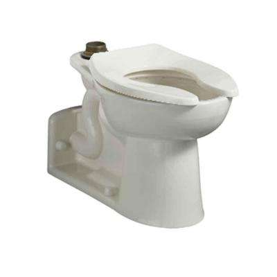 Priolo FloWise 15 in. High EverClean Top Spud Elongated Flush Valve Toilet Bowl Only in White