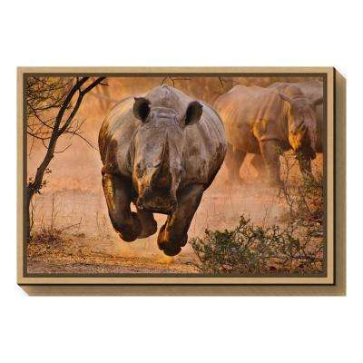 """""""Rhino learning to fly"""" by Justus Vermaak Framed Canvas Wall Art"""