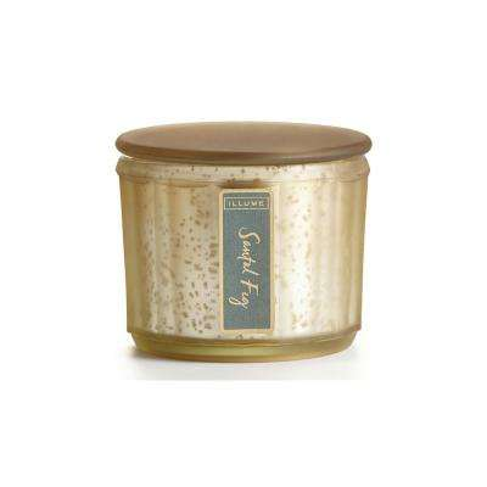 3 in. Santal Fig Lustre Jar Candle