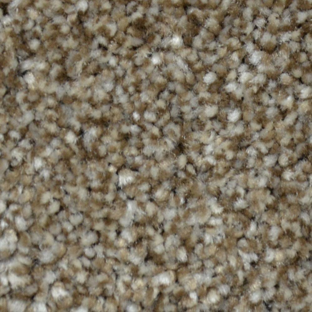 Simple Elegance - Color Serenity Texture 12 ft. Carpet