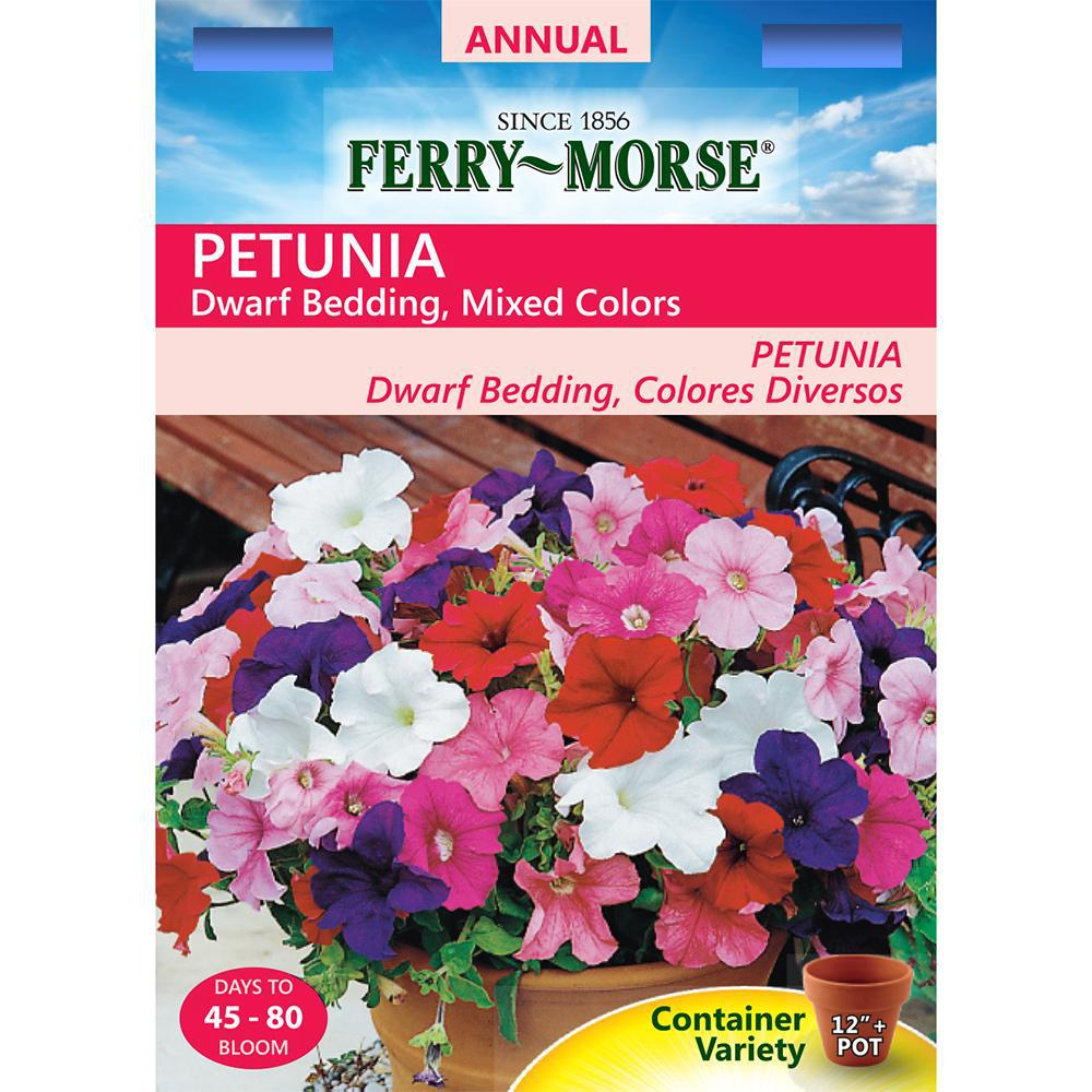 Ferry-Morse Petunia Dwarf Bedding Mixed Colors Seed-1117 - The Home ...