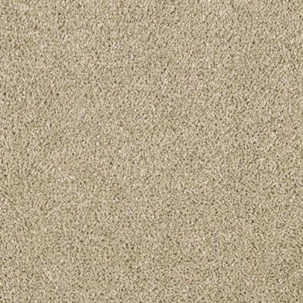 Lifeproof Carpet Sample Pagliuca Ii Color Stepping