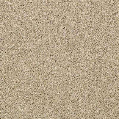 Carpet Sample - Pagliuca II - Color Stepping Stone Texture 8 in. x 8 in.