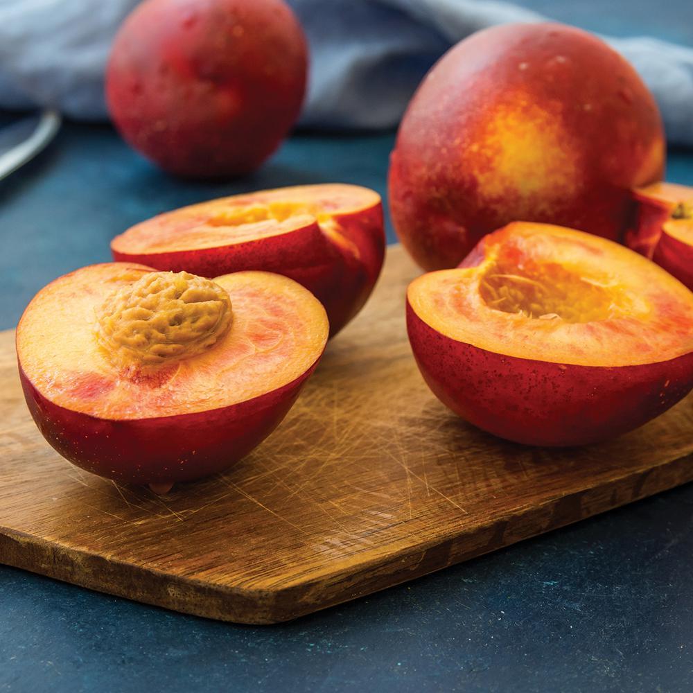Nectarine Tree - Hardired - 1 Root Stock