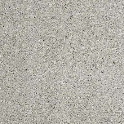 Carpet Sample - Coral Reef I - Color Canyon Grey Texture 8 in. x 8 in.