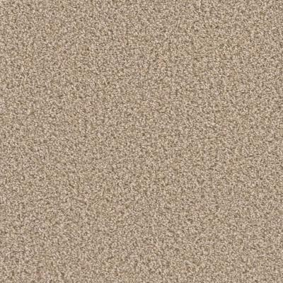 Paradise Texture Carpet Indoor Carpet The Home Depot