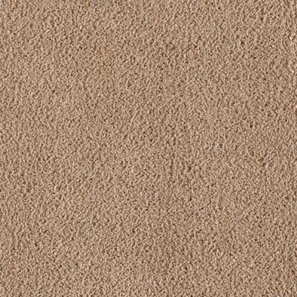 Lifeproof Carpet Sample Wesleyan Ii Color Fired Clay