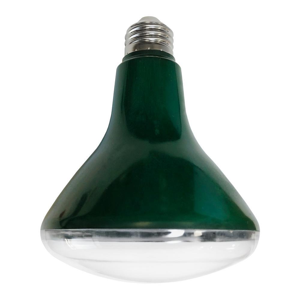 Stonepoint LED Lighting 9-Watt BR30 LED Grow Light Bulb