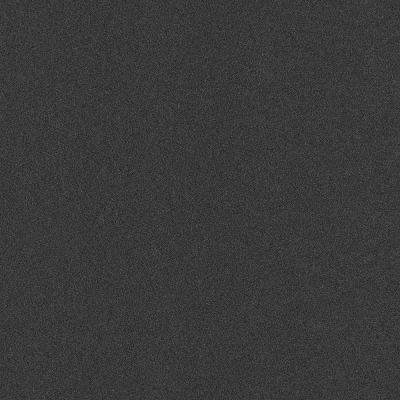 Well Kept II Black Ice Texture 18 in. x 18 in. Carpet Tile (16 Tiles/Case)