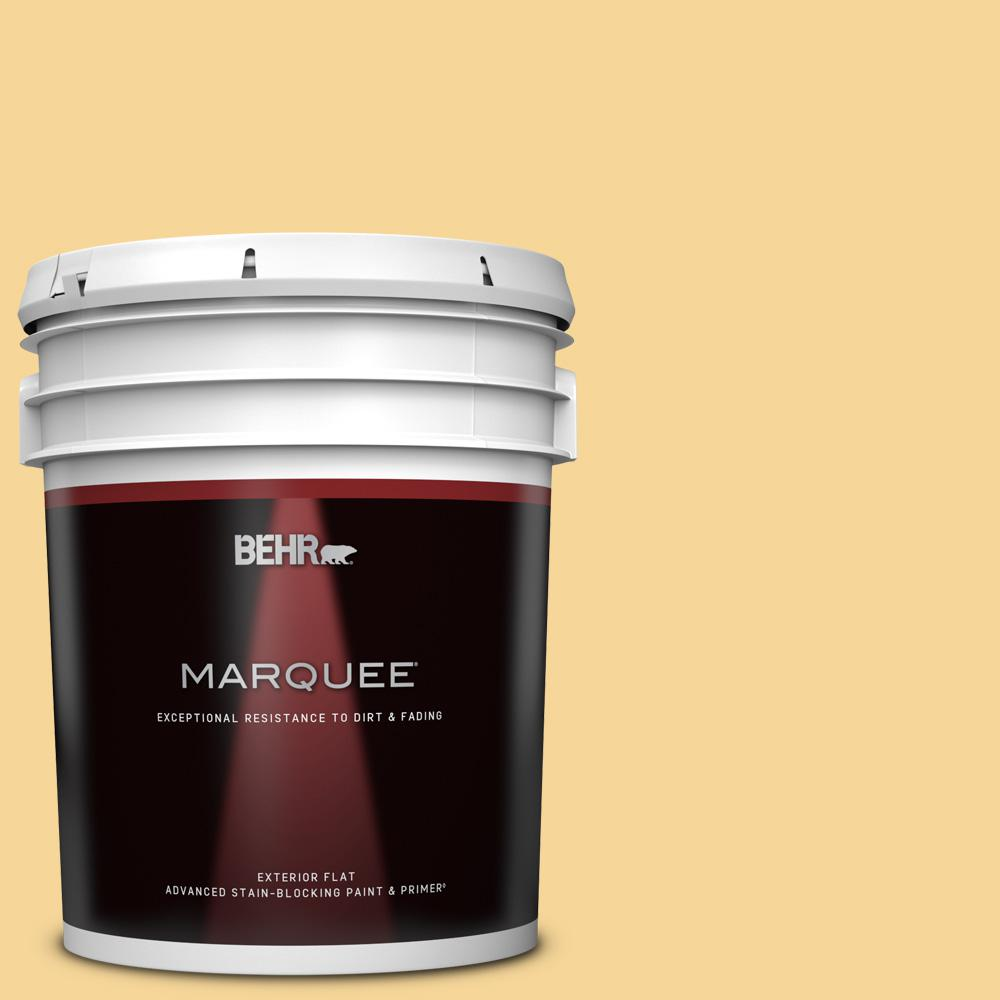 Behr Marquee 5 Gal 350c 3 Applesauce Flat Exterior Paint Primer 445405 The Home Depot