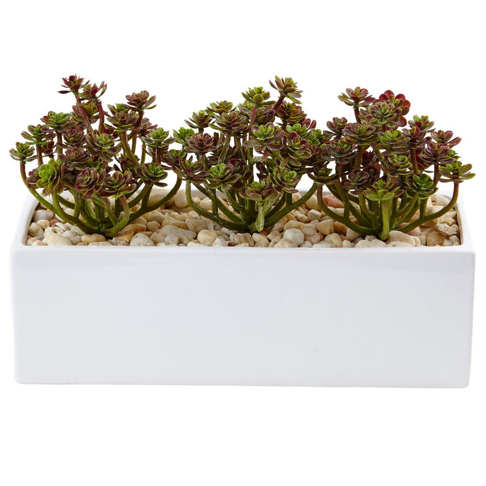 Nearly Natural Indoor 7.75 in. H Sedum Artificial Arrangement in ...