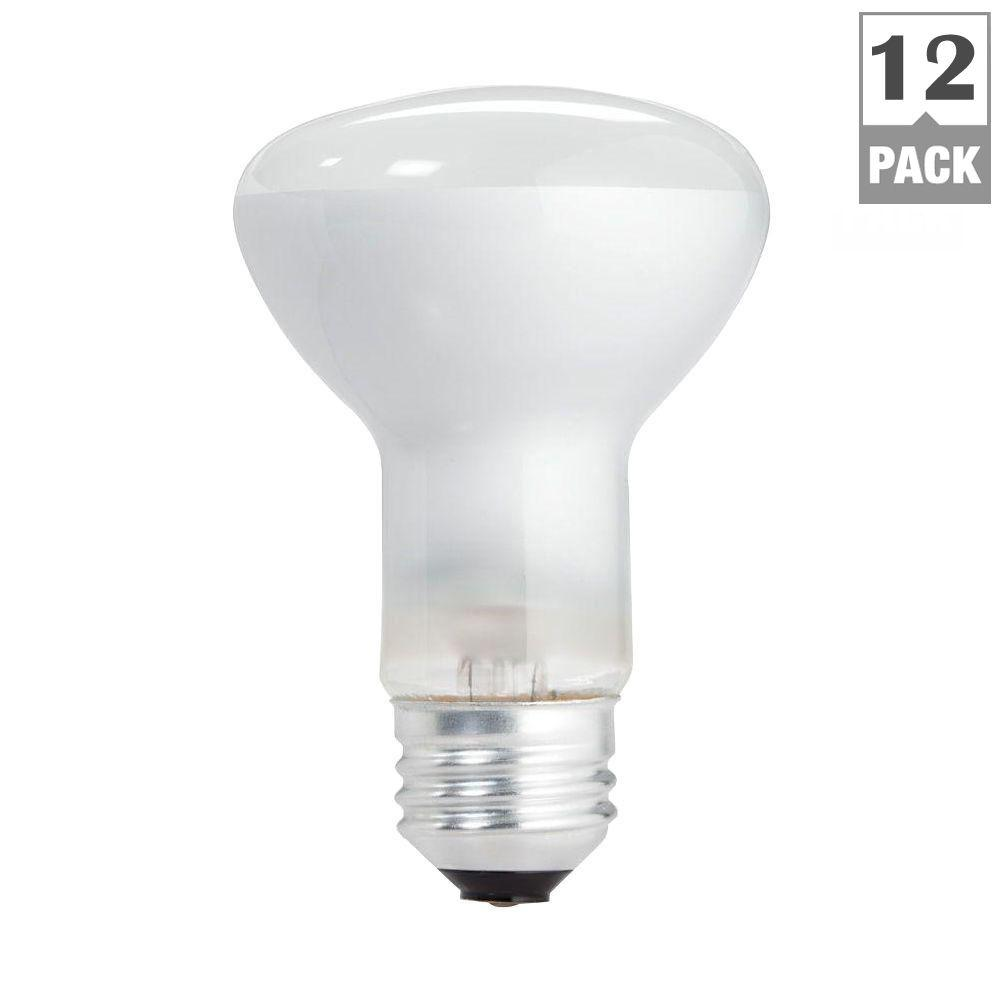 Philips 45-Watt Incandescent R20 Flood Light Bulb (12-Pack)