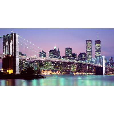 54 in. x 27 in. NY Skyline Wall Mural