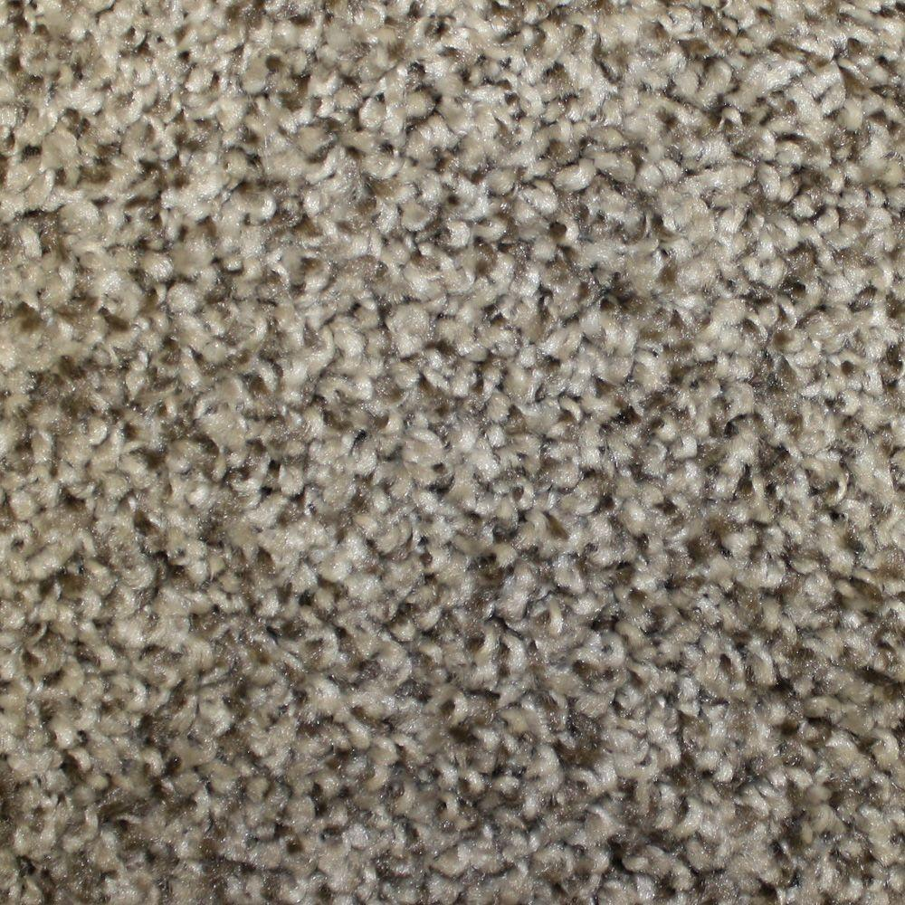 Trafficmaster First Base Color Mascot Twist 12 Ft Carpet