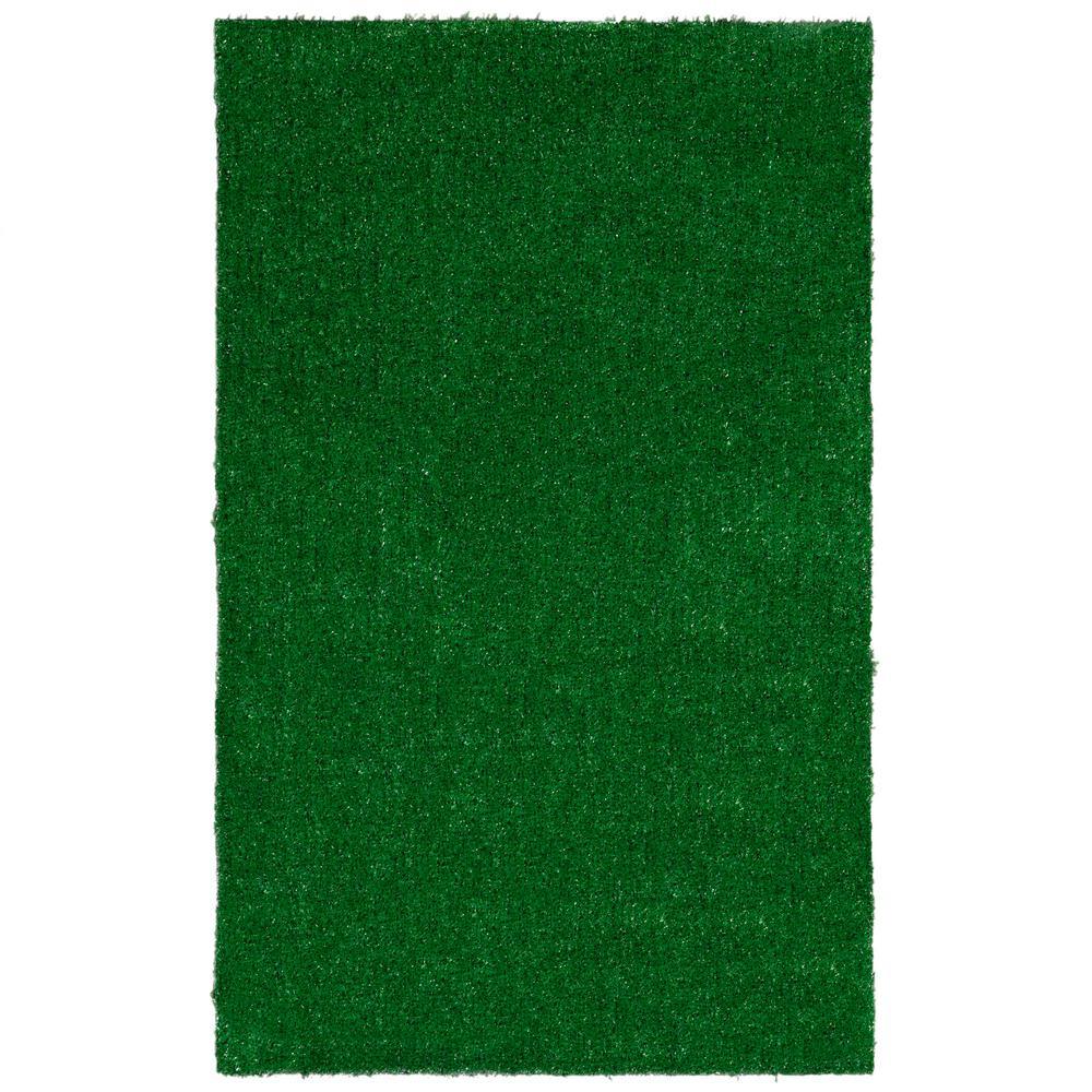 Evergreen Collection Green 2x3 Indoor/Outdoor Area Rug